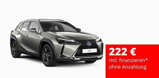 Limitiertes Angebot UX 250 Hybrid Amazing Edition