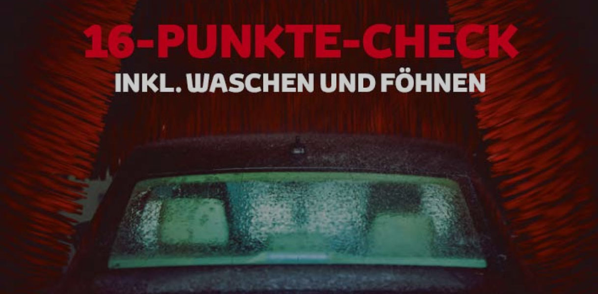 16-Punkte-Check