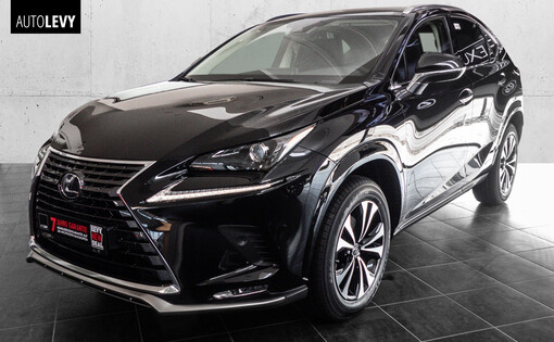 NX 300h Style Edition